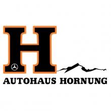 Autohaus Hornung GmbH & Co. KG